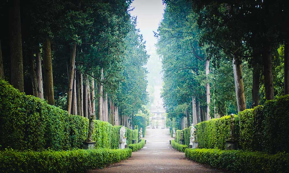 Focus while Remote Working-Tree Lined Gardens in Florence Italy
