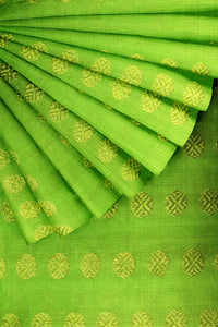 Light Green Kanjeevaram 44""