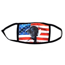 Load image into Gallery viewer, 2020 AMERICAN FLAG MASK 6PCS SET AFMASK2020 MIX-2