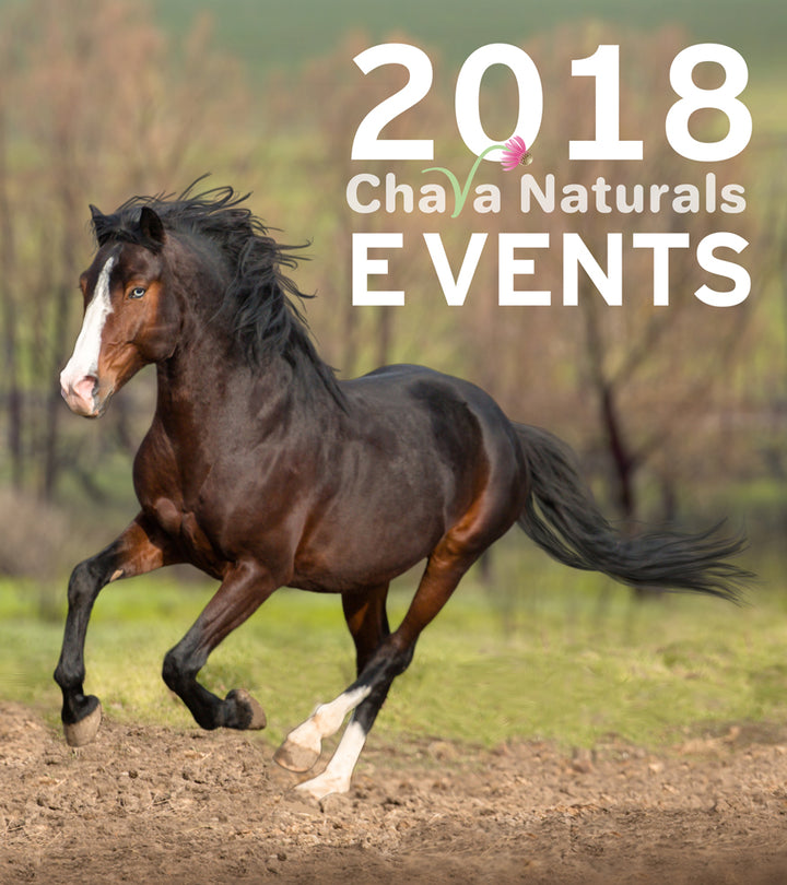 Upcoming Chava Equine and Horse Assisted Education Events