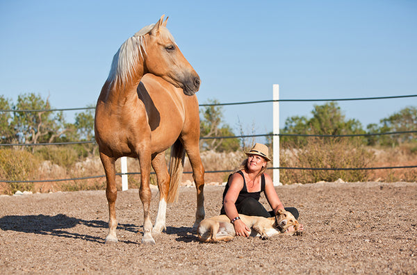Horse Assisted Education by ChavaNaturals