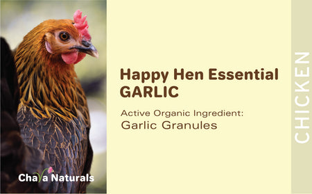 Happy Hen - Garlic