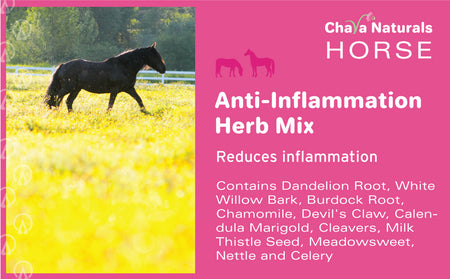 Anti-Inflammation Herb Mix for Horses