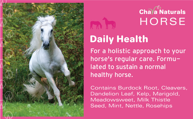Daily Health for Horses