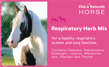 Respiratory Herb Mix for Horses