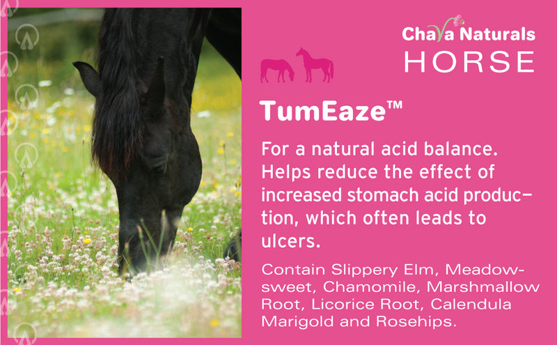 TumEaze™ Herb Mix for Horses