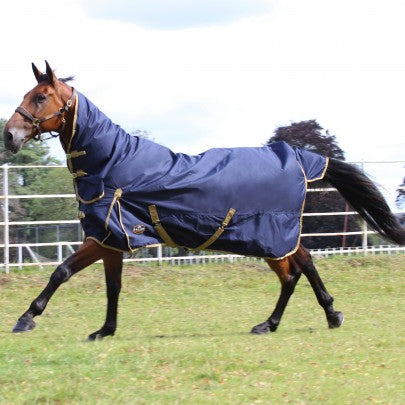 Trojan 100g Combo Turnout Rug