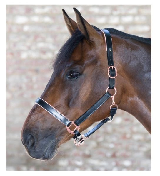 Leather Rose Gold Headcollar