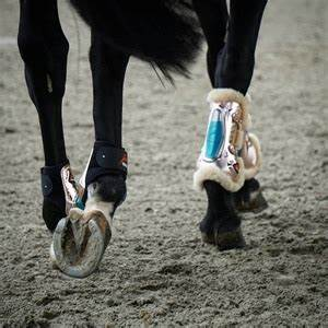 eShock Front / Tendon Boots by Equick (Limited Edition Rose Gold)