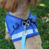 Reflective Pet Harness And Leash Nylon Set For Small Dogs