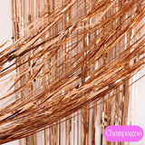 Metallic Foil Tinsel Fringe Curtain For Background Photo Props