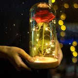 Rose in a Glass Everlasting LED Dome for Home Decor / Gift