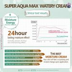 Super Aqua Max Watery Cream 80mL