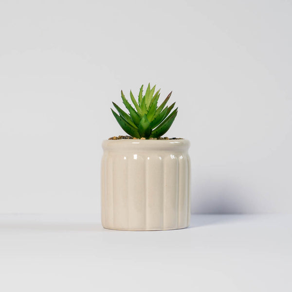 Embossed Potted Faux Succulent