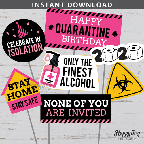 Quarantine Birthday Pink Party Centerpiece Photo Props Cake Topper