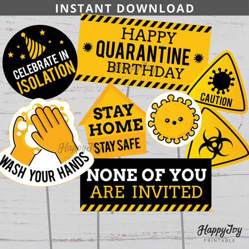 Quarantine Birthday Party Cake Topper Centerpiece Photo Prop