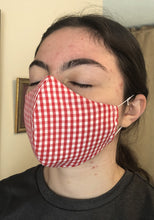 Load image into Gallery viewer, 020 Red Gingham Handmade Protective Fashion Face Mask- 100% Sterilized- includes replacable filter
