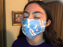 Load image into Gallery viewer, 045 Florida (2PLY) Handmade Protective Fashion Face Mask- 100% Sterilized