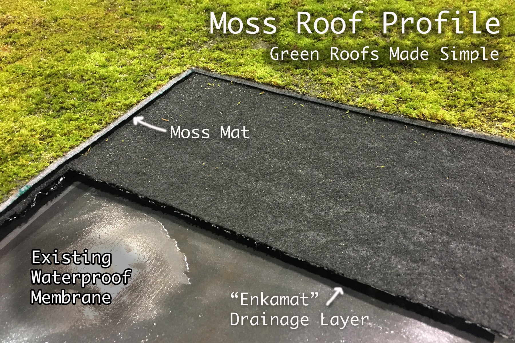 Moss Roofs