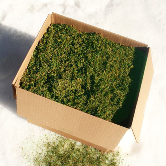 Small Pre-Ground Sheet Moss