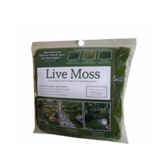 Live Moss Retail Packs (Case of 12)