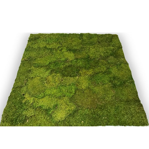 Moss Panels for Shady Areas - Interior Wall Features 1'x1'