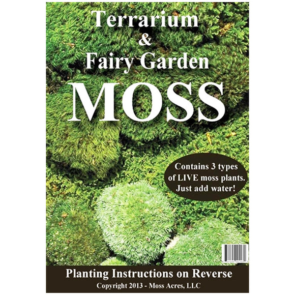 Terrarium and Fairy Garden pack