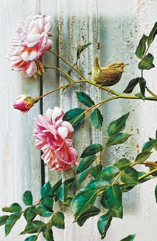 "Summer Roses Wren is a sympathy card featuring wildlife artwork by Carl Brenders. Pumpernickel Press. Made in USA. Includes 1 card and 1 envelope. 8-1/4"" x 5-3/8"""