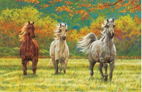 "This embossed birthday card features a painting of running horses in an autumn meadow by artist Chris Cummings.  Includes 1 card and 1 envelope. 8-1/4"" x 5-3/8"""