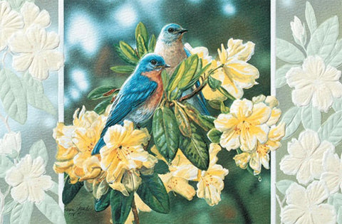 Bluebirds in Rhododendron – An embossed get well soon card by Pumpernickel Press.