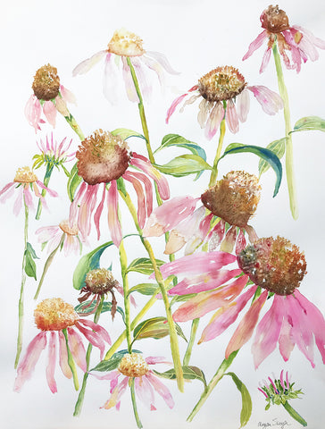Coneflowers for Days by Megan Swoyer.  22 x 30. Watercolor on cold press fine art paper.