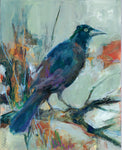 Acrylic painting on board by Leah Kucharek.  8 x 10 in.  Grackles are taller and longer tailed then a typical blackbird.  The birds are native to North America.  They have tapered bills and glossy-iridescent bodies.  There are three paintings in  Leah's grackle series.