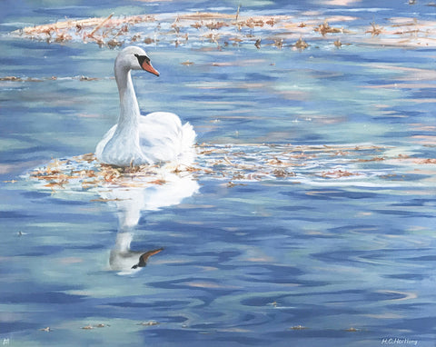 Floating on Blue – oil