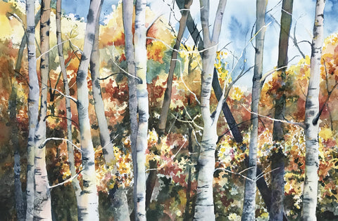 Glowing Birches – watercolor