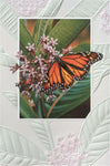 An embossed birthday card by Pumpernickel Press cards made in the USA using agricultural-based inks. Artwork by Russell Cobane features a Monarch butterfly.