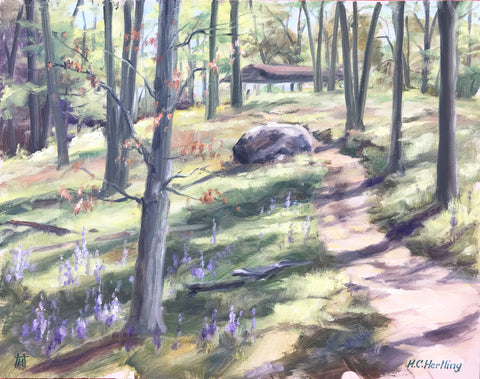 "Woodland. Plein Air Oil on board.  14"" x 11"" By Heiner Hertling."