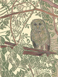 Hidden Owl is an original multi-media linoleum block print by Michigan artist Natalia Wohletz of Peninsula Prints.  The print design features a barred owl sitting in the treetops, camouflaged among the leaves and branches.
