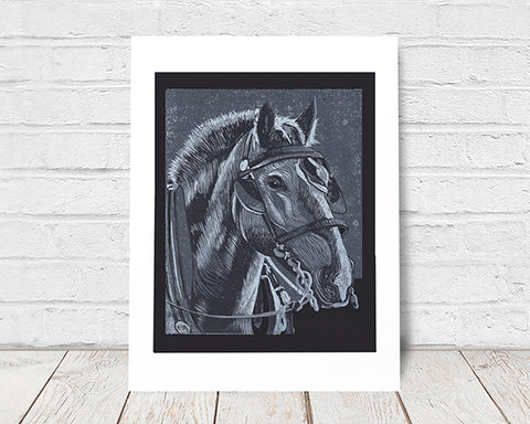 Horse in Monochrome