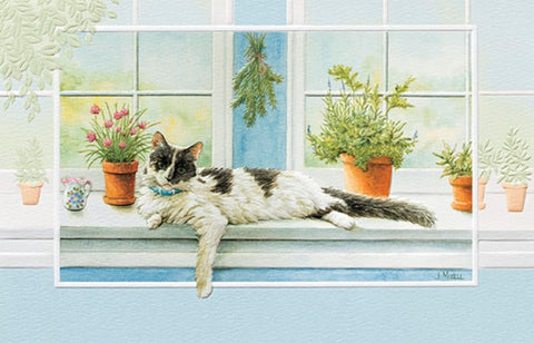 An embossed greeting card by Pumpernickel Press cards made in the USA using agricultural-based inks. Artwork by Judy Mizell features a cat lounging on a windowsill.