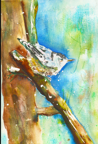 Nuthatch Nuance 2 by Megan Swoyer.  9 x 12. Watercolor on cold press fine art paper.