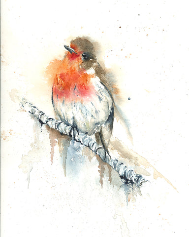 Robin - watercolor