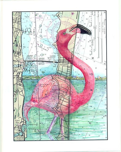 Melbourne Flamingo