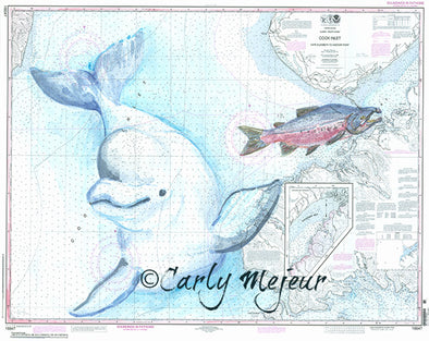 Alaska Beluga and Salmon