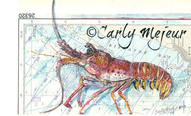 Biscayne Bay Lobster