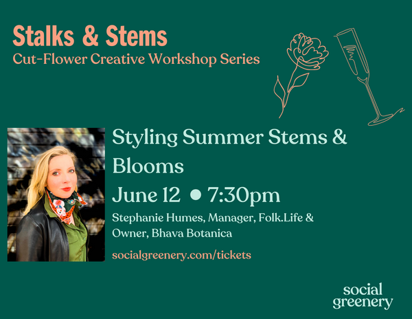 Stalks & Stems Tickets - Styling Summer Stems & Blooms -12 June