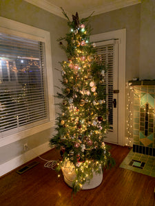 Oklahoma City Metro Area Living Christmas Tree Rental