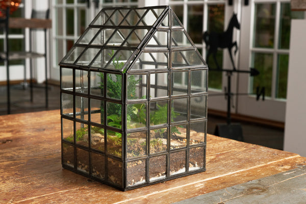 "Grid Greenhouse Terrarium - 12""x 8""x8"" (Black Steel)"
