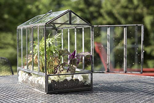 "Urban Born Glass Terrarium, Greenhouse - 10""x7""x10 (Urban Black Steel, Large)"