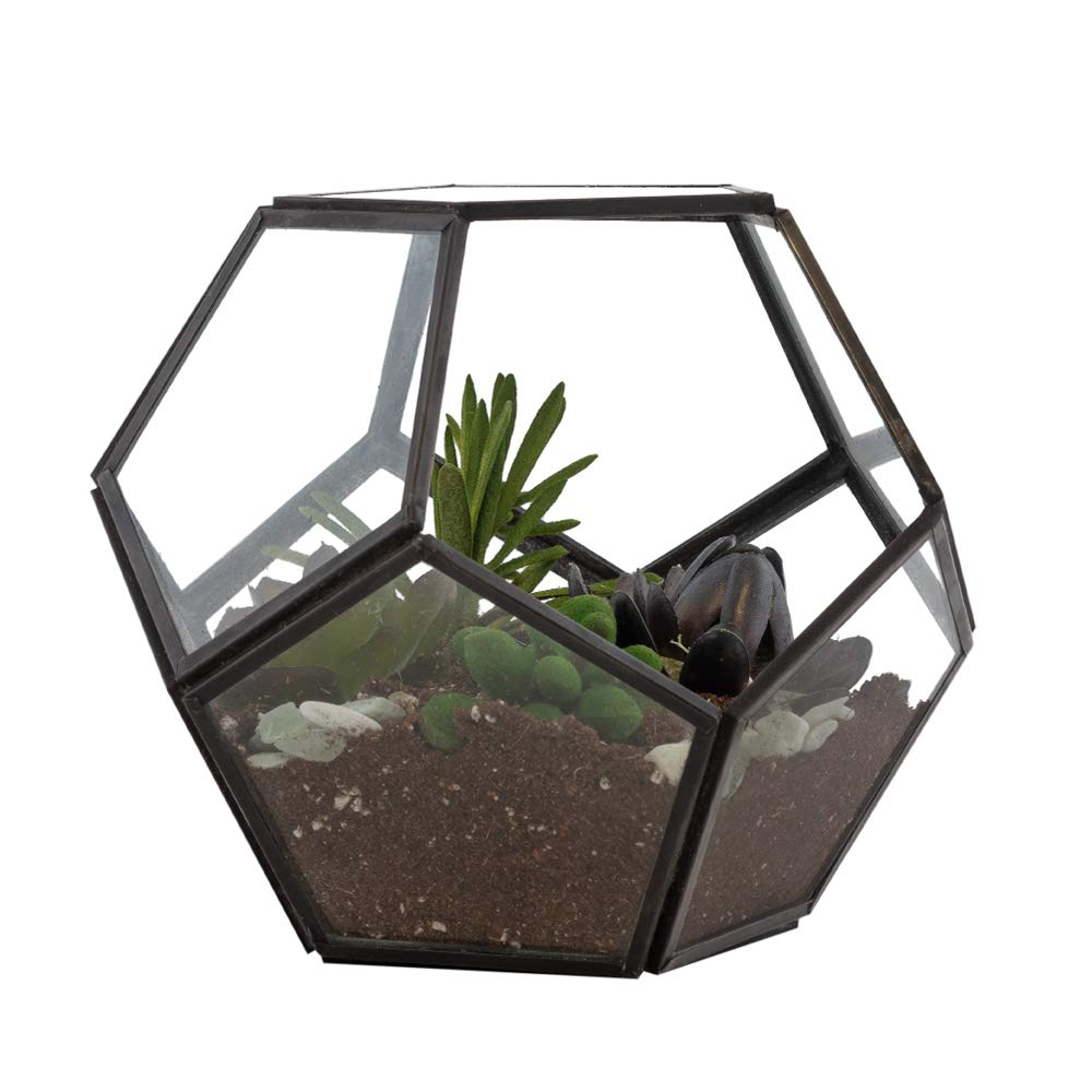 Black Steel Geometric Terrarium