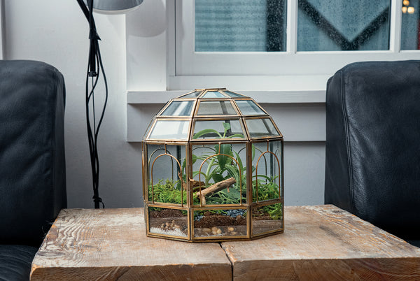 "Urban Born Glass Terrarium, Birdcage - 9""x9""x10"" (Urban Brass Steel, Large)"